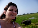 water buffalo selfie, hoi an, vietnam