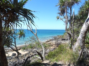 Noosa national park, Sunshine Coast, Australia