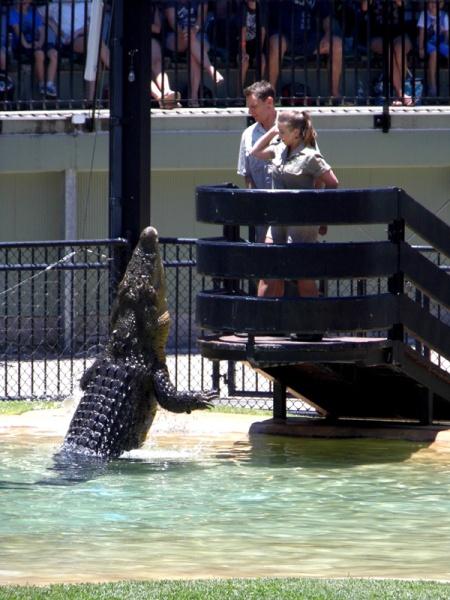 Australia Zoo crocodile show with Bindi Irwin