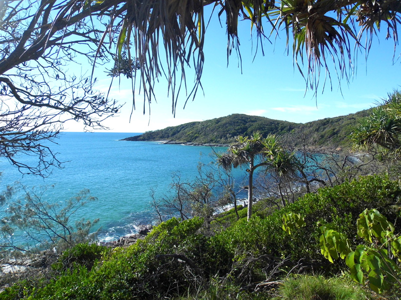 Noosa national park, Queensland, Australia