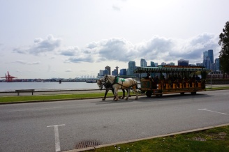 Stanley Park Horse-Drawn Carriage Driving tour, Vancouver, Canada