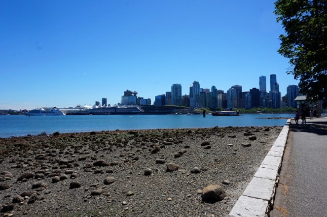 Vancouver city from Stanley Park, Vancouver, Canada