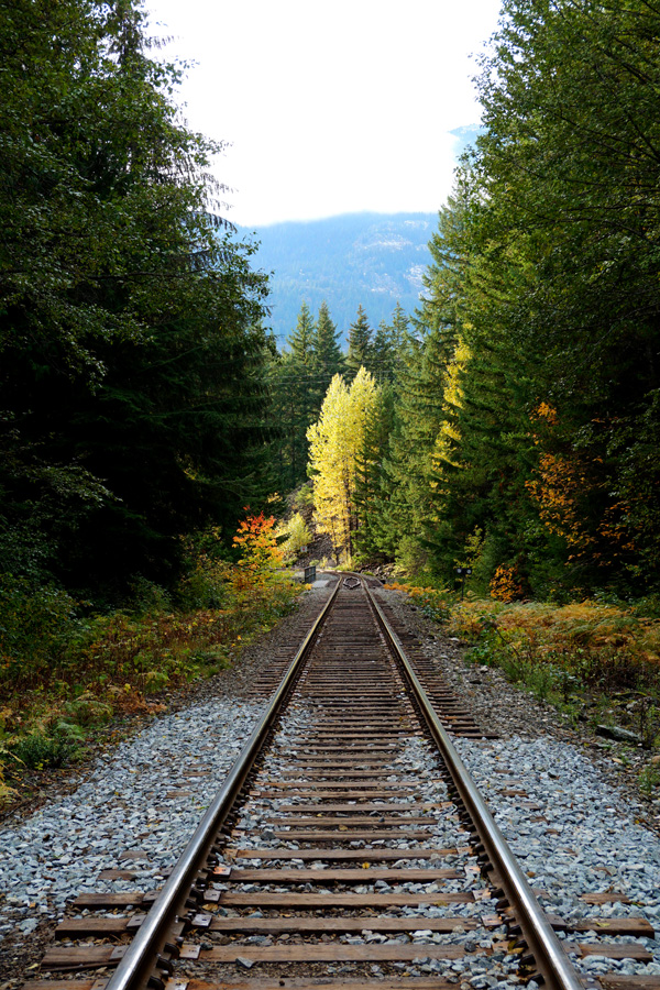 Train track, Brandywine Falls, Whistler, Canada