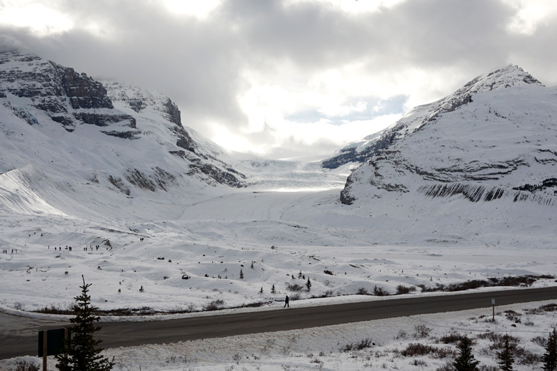 Columbia Icefield, Jasper National Park, Canada