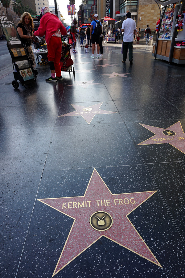 Hollywood Walk Of Fame, Hollywood Boulevard, LA, USA