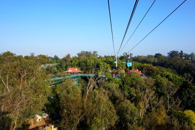 Skyfari, San Diego Zoo, USA