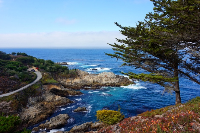 Point Lobos Reserve, Big Sur, California, USA