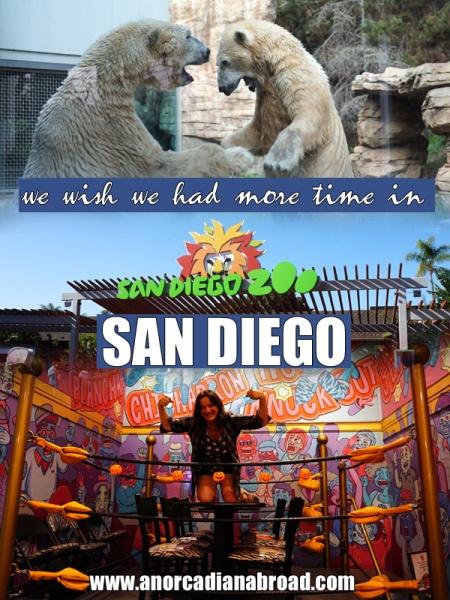 One Day In San Diego - tacos, cool neighborhoods & San Diego Zoo!