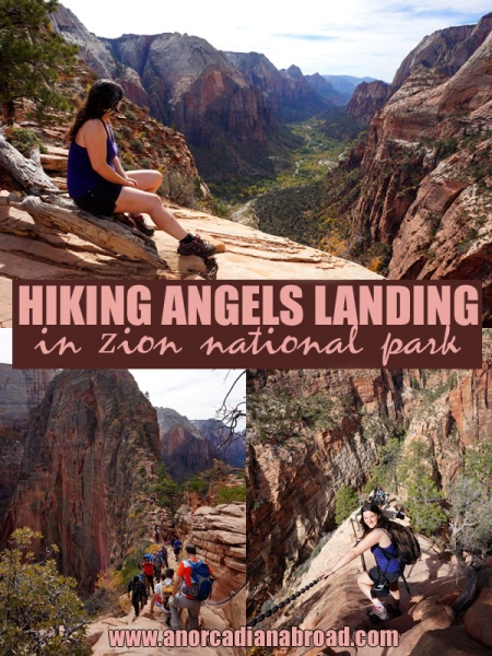 Hiking Angel's Landing in Zion National Park, USA - here's everything you need to know about this iconic, beautiful hike!