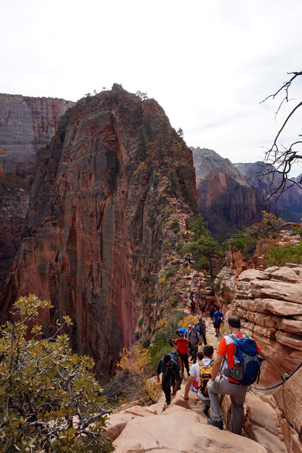 Angel's Landing, Zion National Park, USA
