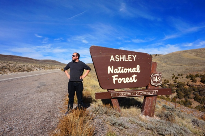 Ashley National Forest, Utah / Wyoming
