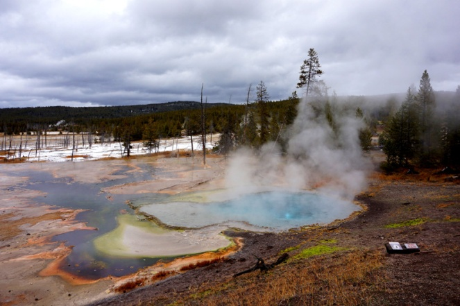 Hot springs, Yellowstone National Park, USA