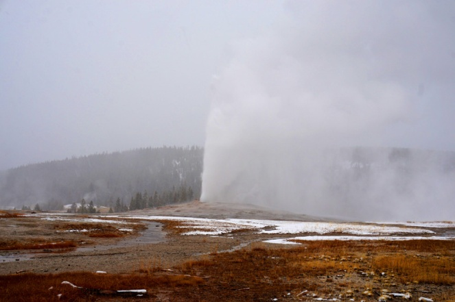 Old Faithful geyser, Yellowstone National Park, USA