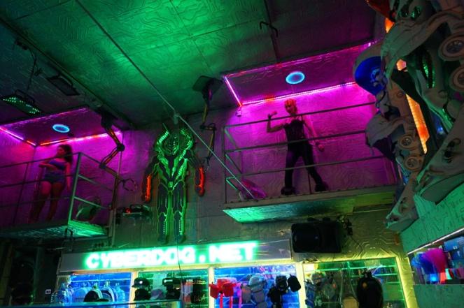Cyberdog, Camden, London