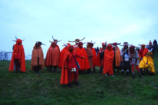 Highland Cows, Beltane Fire Festival, Edinburgh