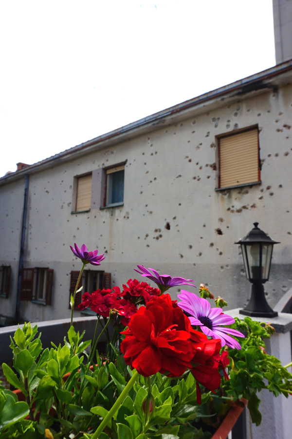 Bullet hole building with flowers, Mostar, Bosnia & Herzegovina
