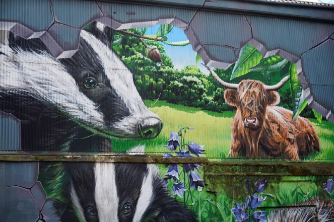 Badger & highland cow street art, Glasgow, Scotland