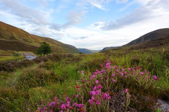 Braemar, Cairngorms, Aberdeenshire, Scotland
