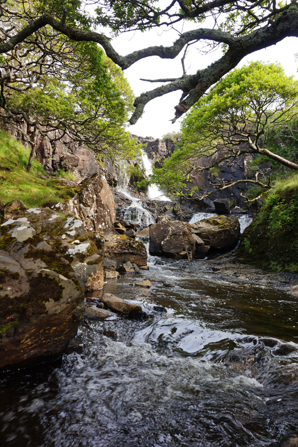 Eas Fors Waterfall, Isle Of Mull, Scotland
