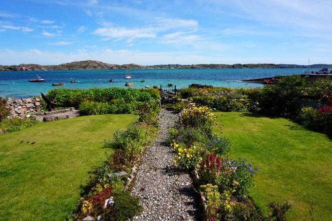 Garden, Iona, Scotland