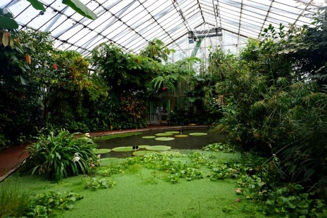 Royal Botanic Garden glasshouse, Edinburgh, Scotland