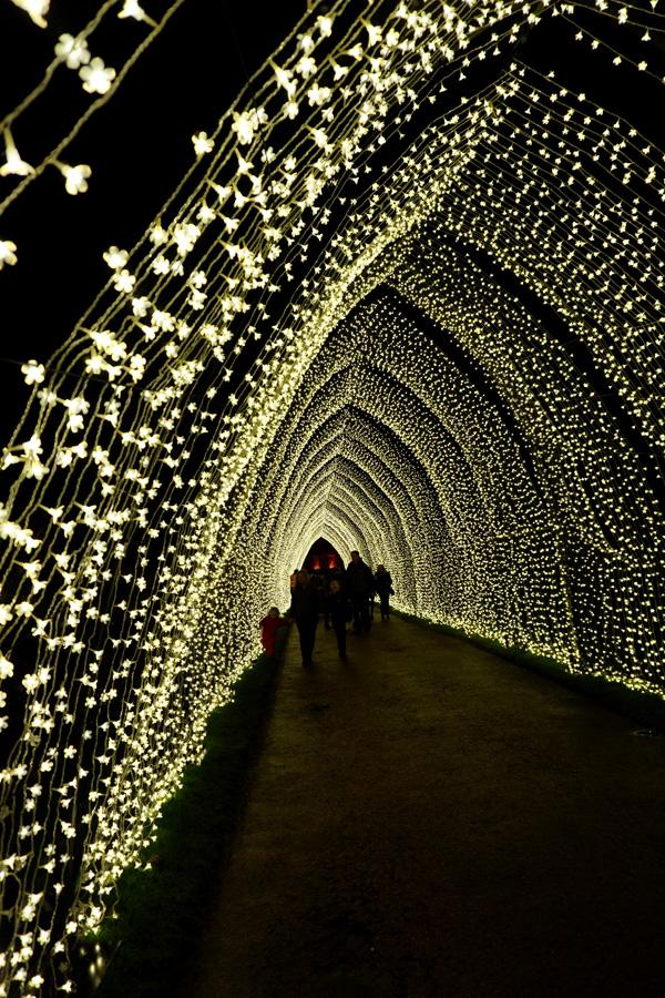 Christmas At The Botanics, Edinburgh, Scotland