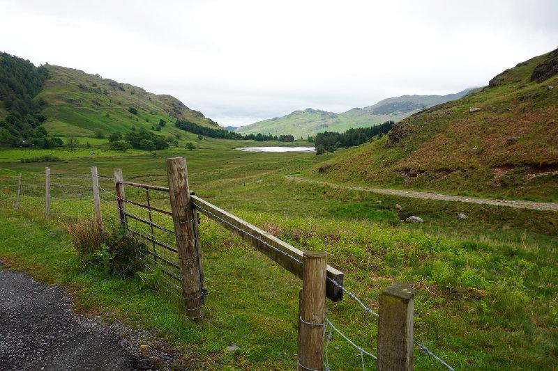 View across to Blea Tarn, Lake District, England